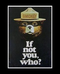 So appropriate! Smokey asks the perfect question why YOU should step up to prevent hate crimes and forest fires! smokey-if-not-you-hubpages-com.jpg