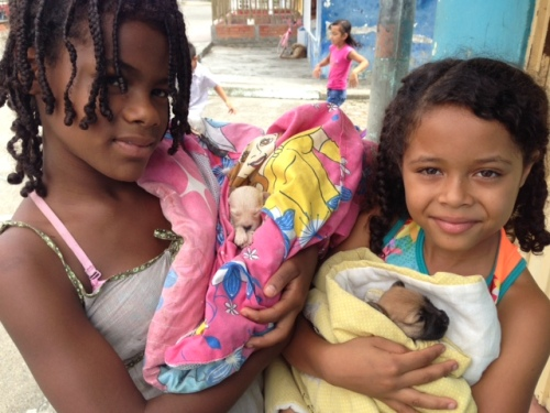 Two students came to join me on the street one day holding these blankets - and newborn pups.  The white one only 15 days old!